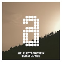 Mr. Electronicvein - Blissful Vibe
